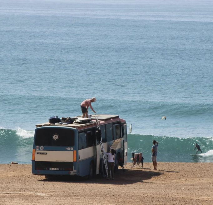 Bus commodore Surf