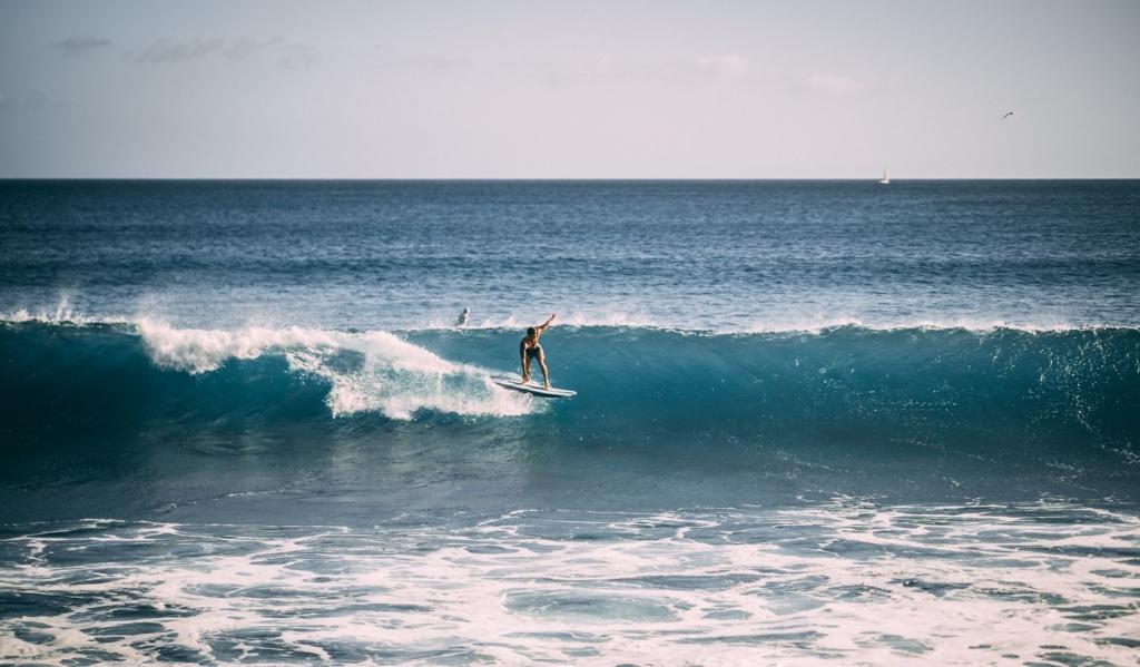 Surf koji-futami