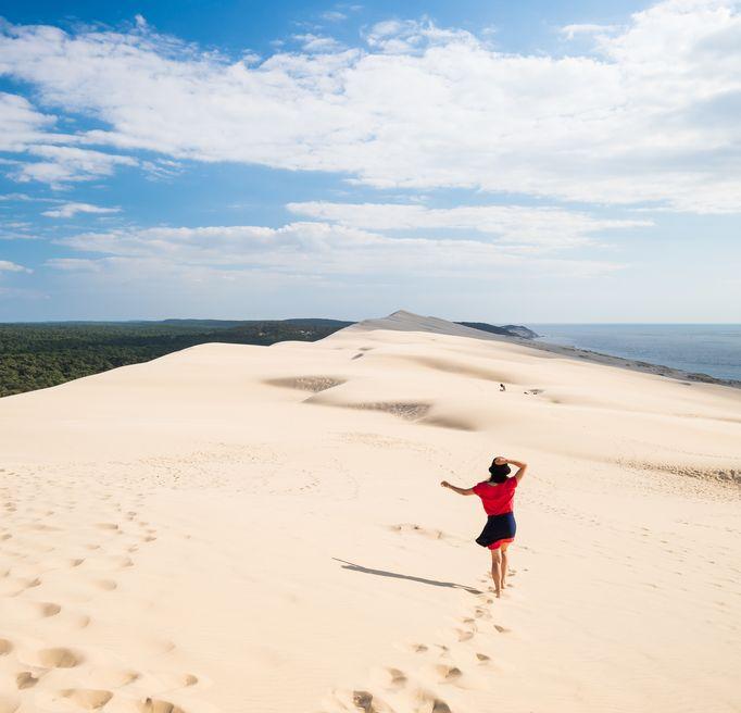 Dune Pilat Programme
