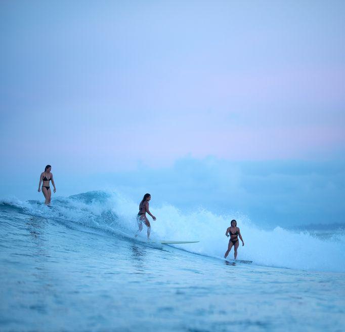 Programme Surf Roxy